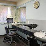 Ainslie Low Head Salon